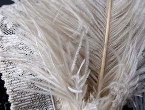 La tourangelle - Laver oreiller en plume ...